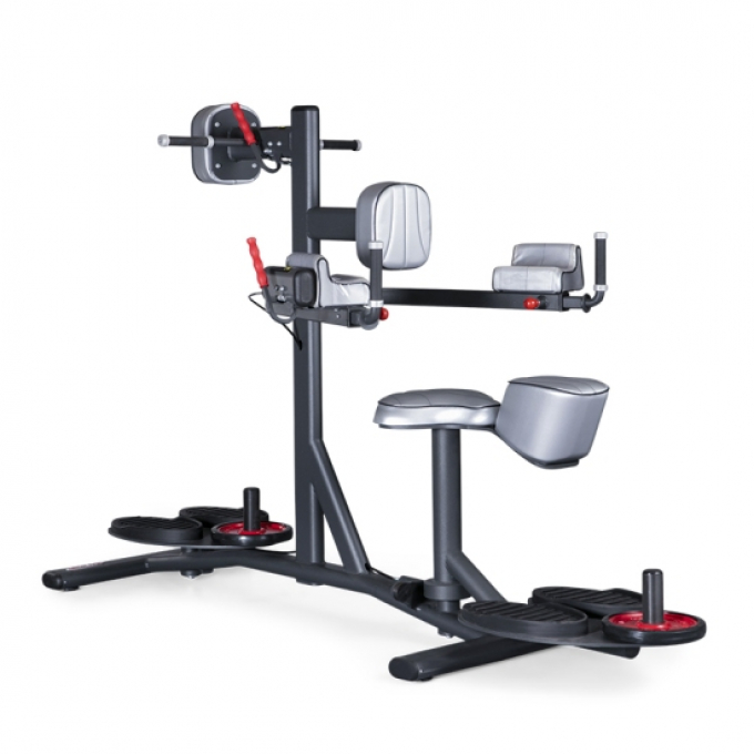 Твистер стойка Standing and seated double twister 1FE216 Panatta