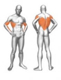 Для развития мышц верхней части спины