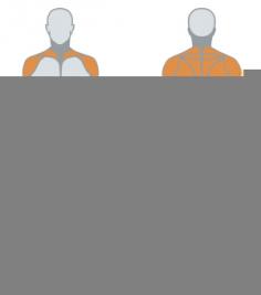 Жим от груди наклонный Inclined chest press 1HP535B Panatta